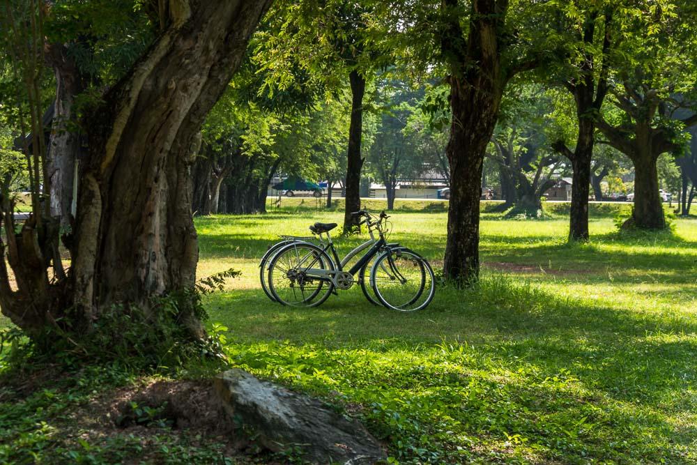 Bicicleta-transporte-ecologico